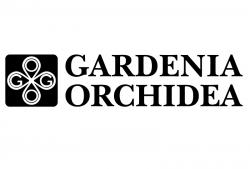 Gardenia Orchidea (Versace)